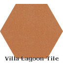 """Smoked Pumpkin"" Hexagonal Cement Tile"