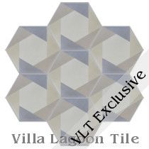Hex Cane Cement Tile, from Villa Lagoon Tile