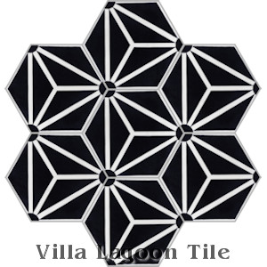 """Atlas A Black and White Evening"" Hex Cement Tile, from Villa Lagoon Tile."