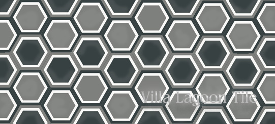 Frames hexagonal cement tile